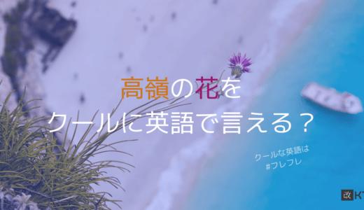「高嶺の花」をスマートに英語で言いたい!